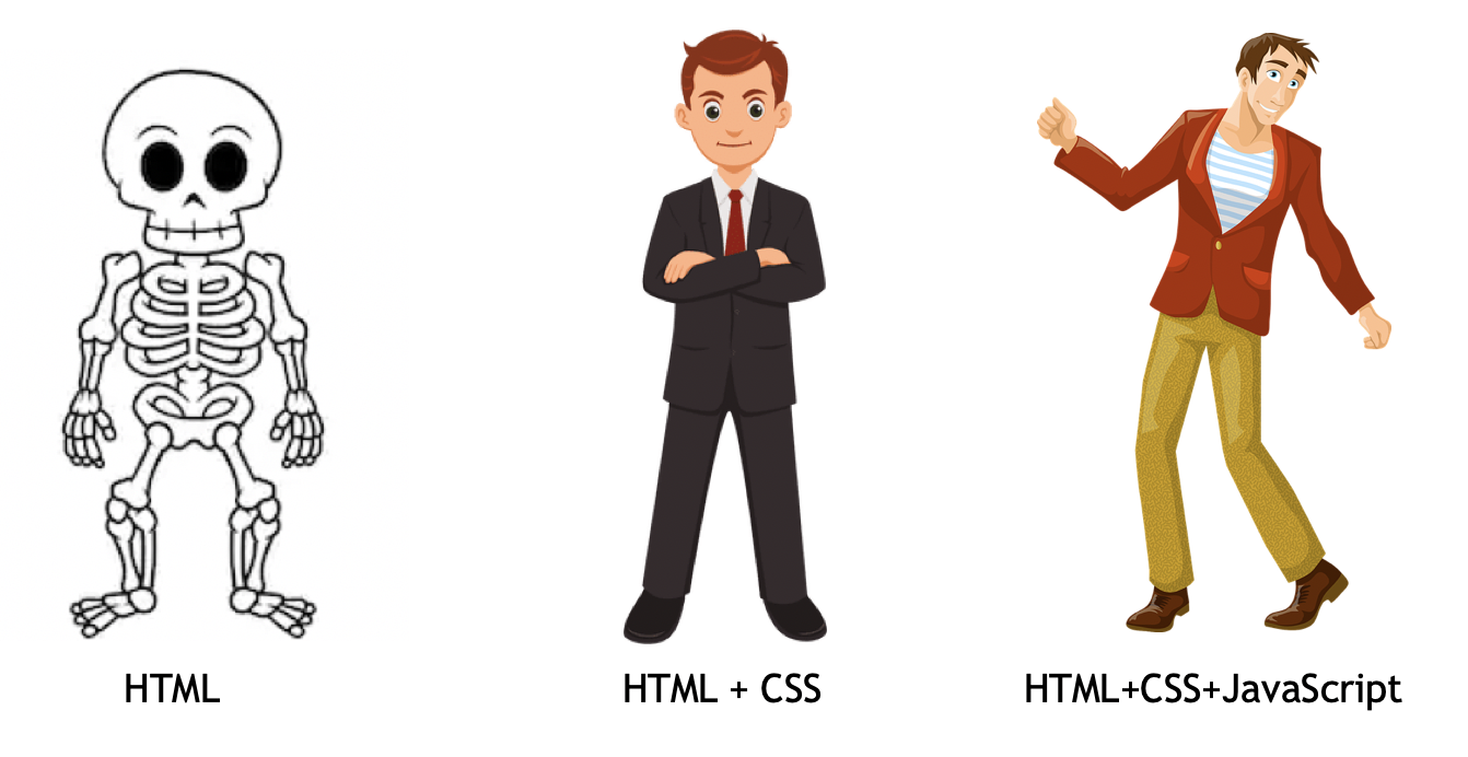 html css and js is like body anathomy